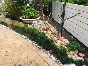 garden-maintenance-edging-avalon-ccandm-landscapes
